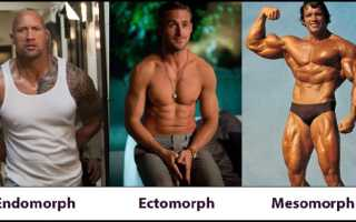 Диета для эктоморфа для похудения