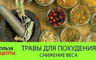 Состав трав для похудения рецепты