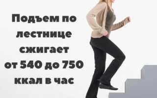 Сколько калорий сжигает подъем по лестнице
