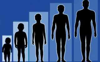 Как увеличить рост человека в 18?