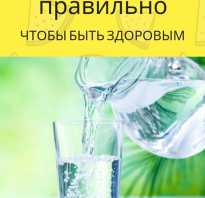 Сколько времени всасывается вода в желудке