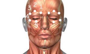 Точечный массаж для восстановления зрения