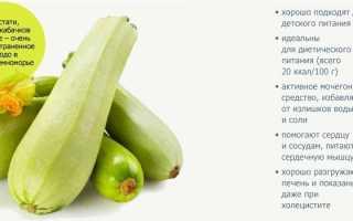 Салат из кабачков свежих для похудения