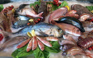 Полезность рыбы для организма