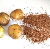Картошка или гречка для похудения