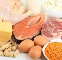 Полезные белки список продуктов