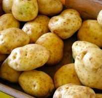 Диета кефир и картошка в мундире