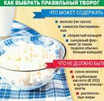 Рецепты из обезжиренного творога для похудения