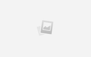 Влияние на организм человека белков жиров и углеводов